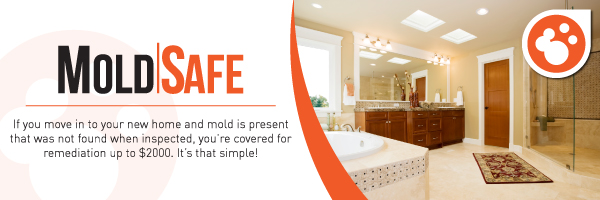 San Diego Real Estate Inspections Mold Safe
